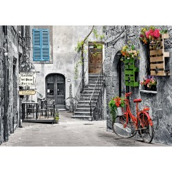 Charming Alley with Red Bicycle, 500-bitarspussel